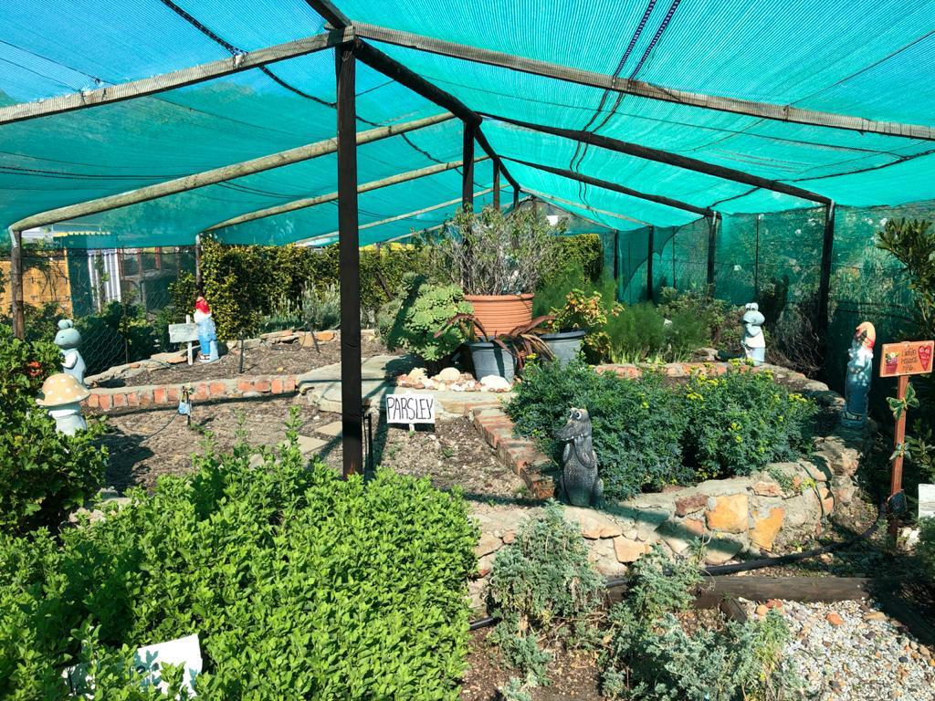 Herb garden at the River at Starry Starry Night, Route 62, Montagu, South Africa